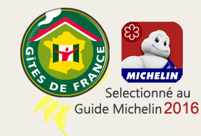 selection guide michelin 2016